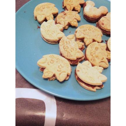 biscuit-ConvertImage